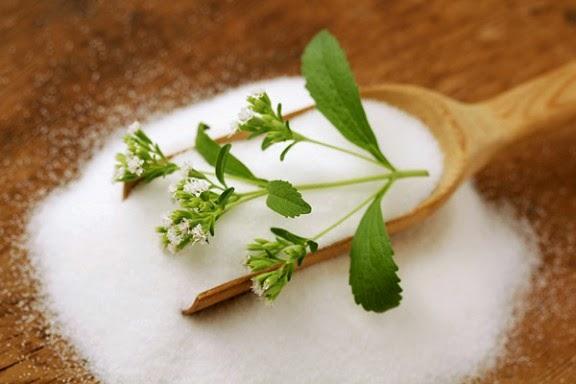 Stevia – dovada ca indulcitorii pot fi si sanatosi