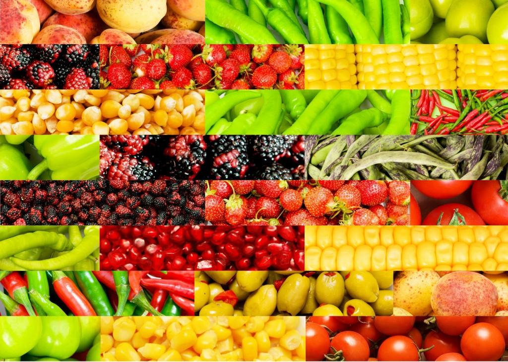 raw vegan bioportal 2