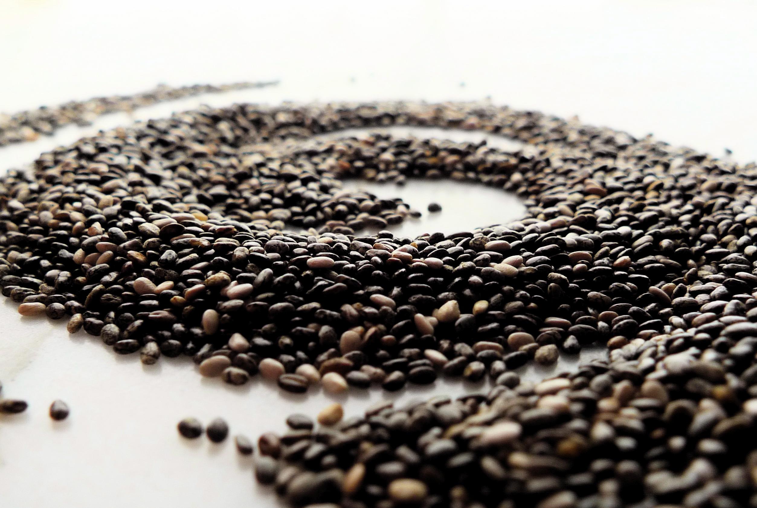 Semintele chia – cea mai bogata sursa naturala de omega 3
