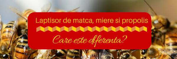 Laptisor de matca pur, miere sau propolis. Care este diferenta?