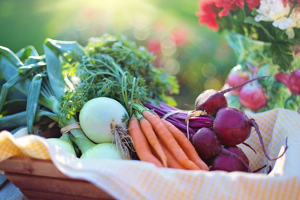 Fructele si legumele toamnei