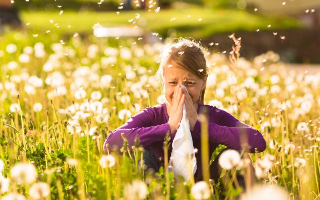 15 remedii facute acasa pentru alergii