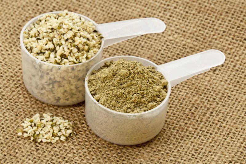 Pudra din proteina de canepa – cea mai buna proteina pe baza de plante?