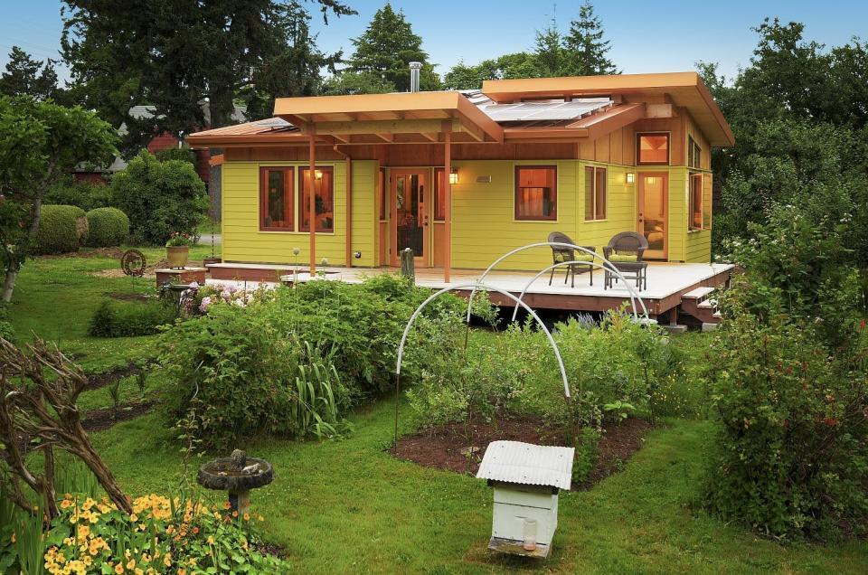Sarea Epsom – casa si gradina